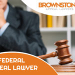 4 Qualities to Look for in a Federal Appeal Lawyer
